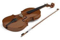 Bratschenunterricht Mannheim, Unterricht für Viola
