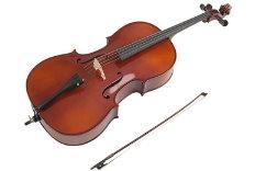 Geigenunterricht Mannheim